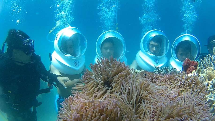 đi bộ dưới đấy biển ngắm san hô